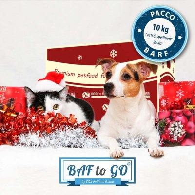 Pacco Natale BAF to GO